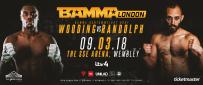 Dominique Wooding Vs. Danny Randolph At BAMMA 34